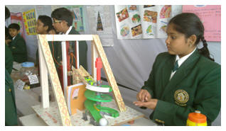 DPS-MIS-Social Science Exhibition